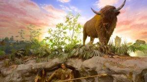 Bison Hunt Exhibit