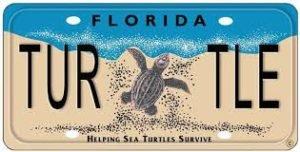 Sea Turtle Licence plate