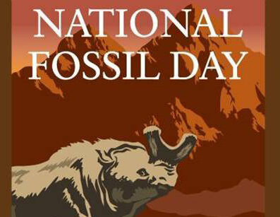 National Fossil Day: Half Price Admission