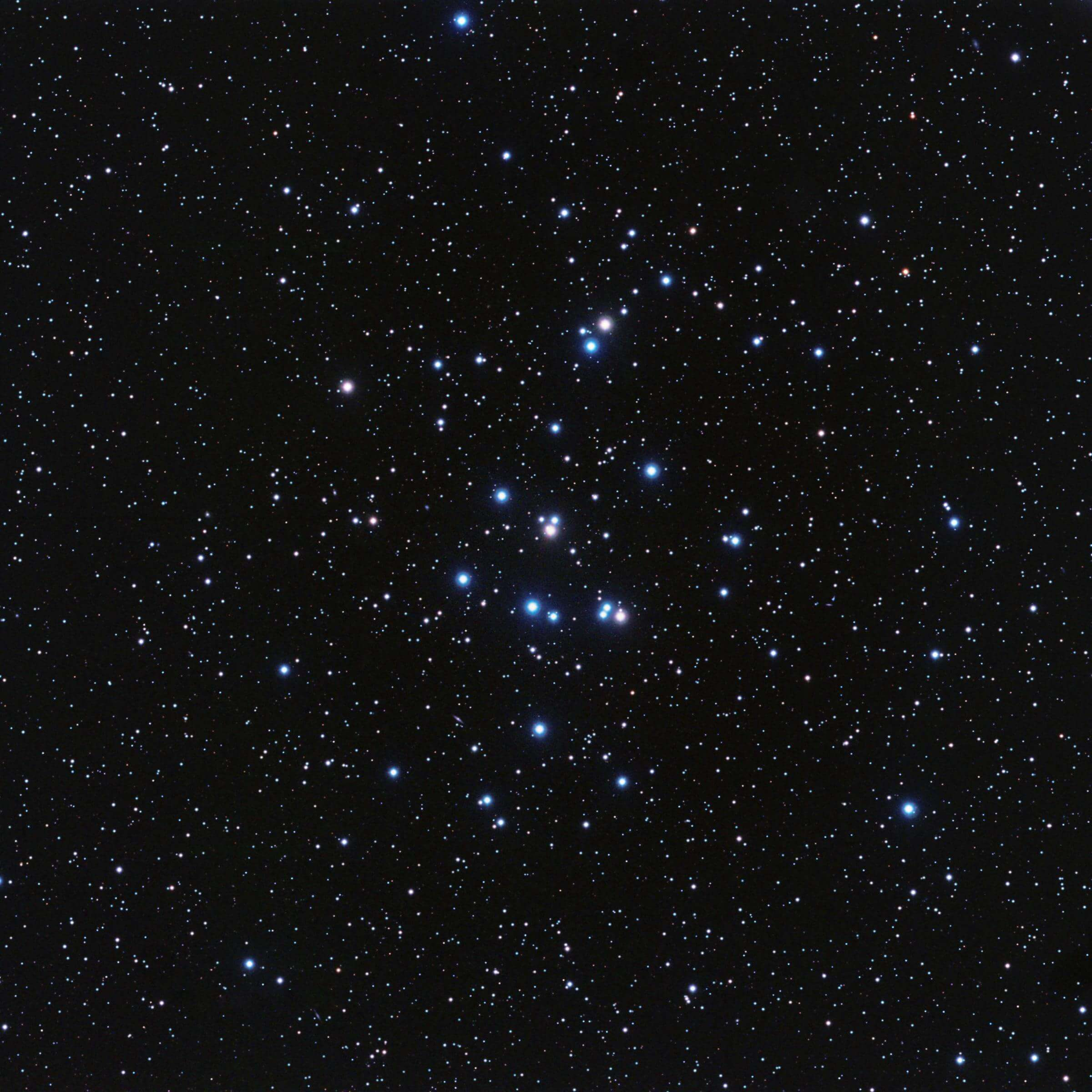 Seeing Stars at The Bishop